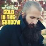 william-fitzsimmons-album